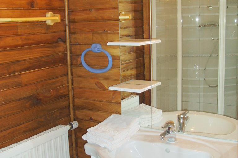 Chalet Alistelle Shower Room 3
