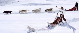 Dog Sledding Tignes